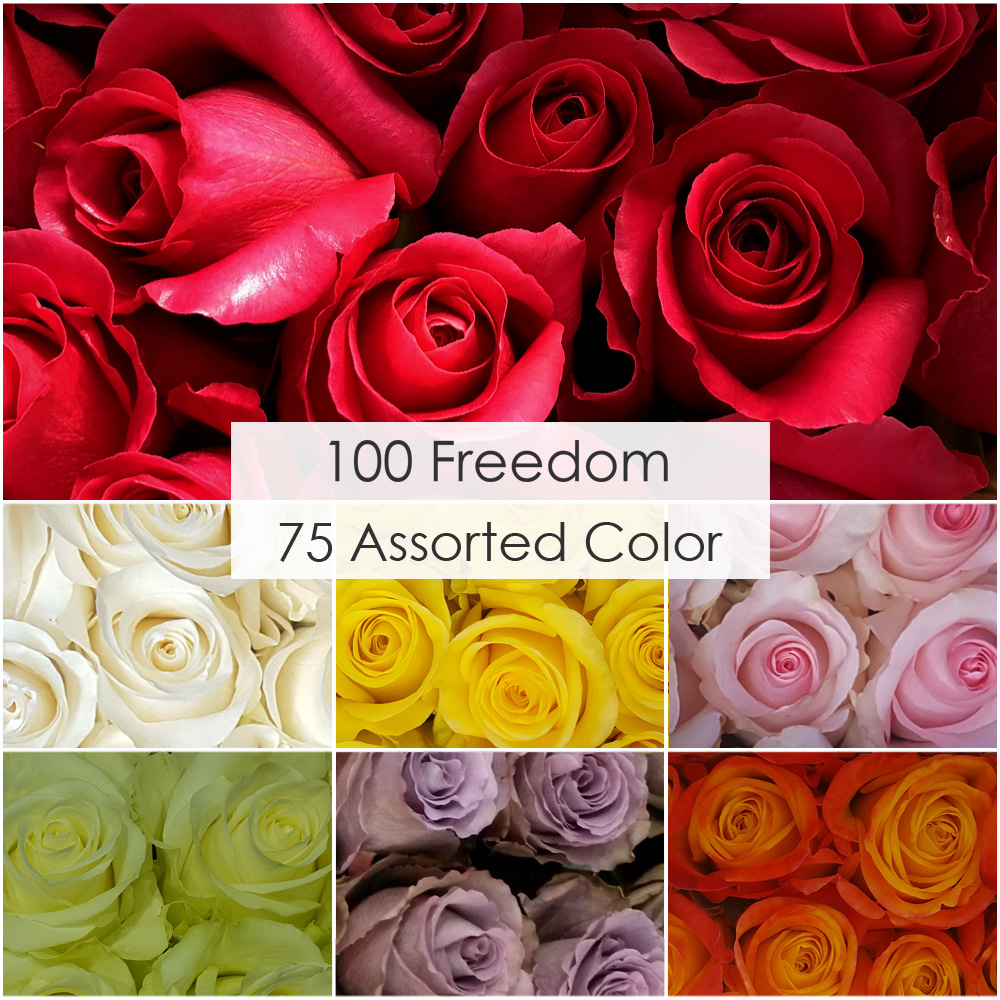 Rose V-Day Box (100 Reds, 75 well balanced 60 cm --> price for 1 HB - $2.03